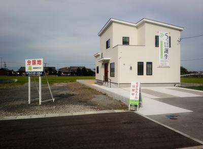competitive price a1339 edea5 BELS(ベルス)5つ星の家!:大塚正俊のブログ