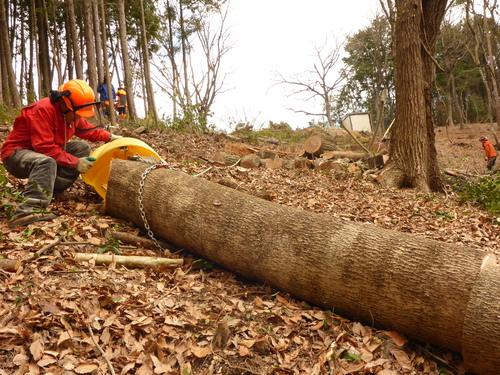 大分エコクラブ」は、雑木を薪に...
